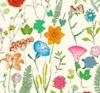 Wildflower Giftwrap