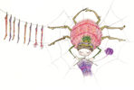 Baglady Design Card: Knitting Spider