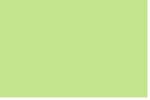 Steinbeis Pastel Green, 80g